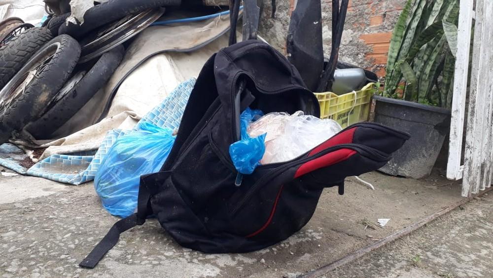 Feto congelado estava em mochila — Foto: Luiz Souza/NSC TV