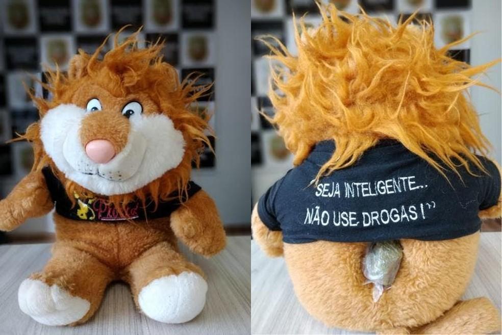Porção de maconha foi encontrada escondida na parte de trás do mascote de pelúcia — Foto: Polícia Civil/Divulgação