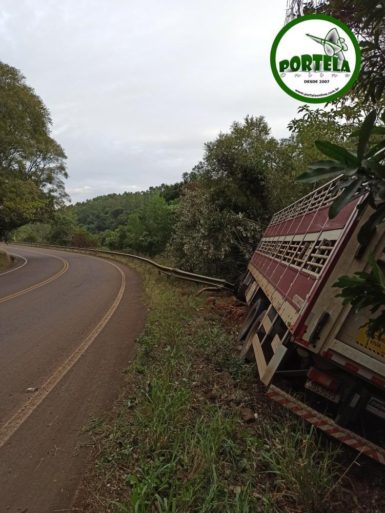 Veículo ficou amparado pelo guard rail e por árvores / Foto: Sandro Medeiros – Portela Online