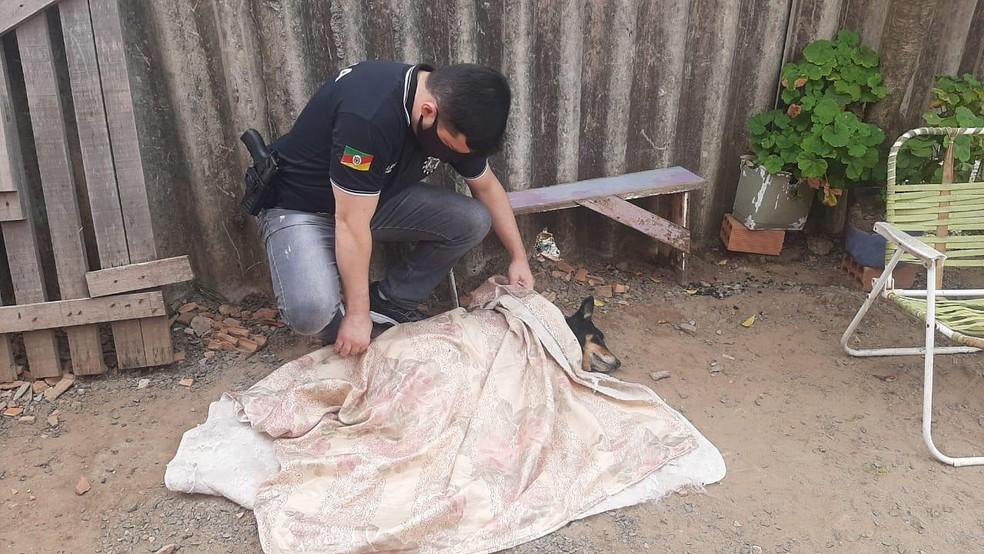 Corpo de cão foi recolhido por policiais civis, em Canoas — Foto: PC/D