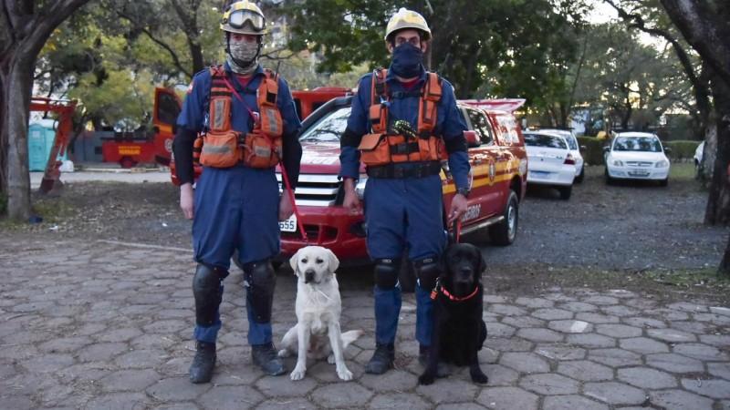 A dupla de bombeiros militares e cães de guarda chegaram hoje em Porto Alegre - Foto: Rodrigo Ziebell/GVG