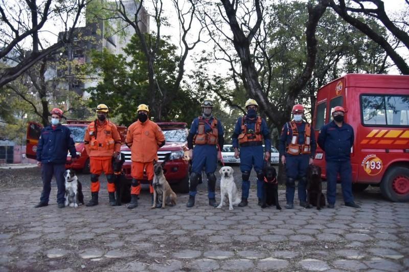 Equipe de cães do CBMSC atua em apoio a buscas por bombeiros desaparecidos após incêndio na SSP - RD Foco