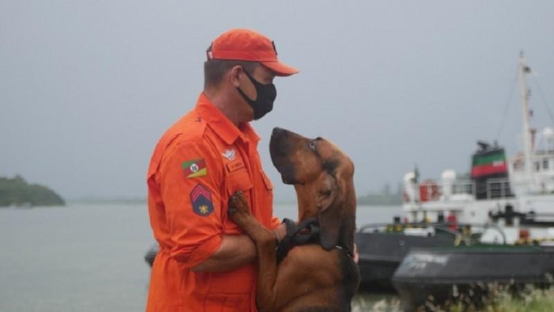 A dupla formada por bombeiro militar cinotécnico e cão é chamada de binômio - Foto: Elias Ramos/CBMRS